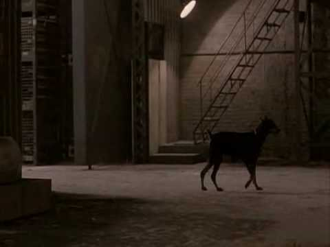 Remo Williams - Dogs scene