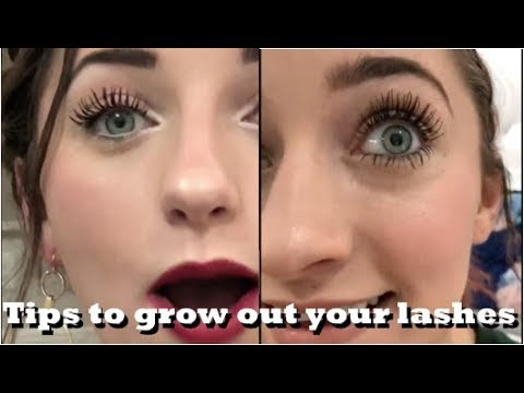 Bailey vs  Brooklyn mascara routine | The TRUTH behind their | Tips to grow out your lashes