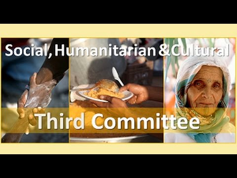 Social, Humanitarian and Cultural Committee (Third Committee) - Promo video