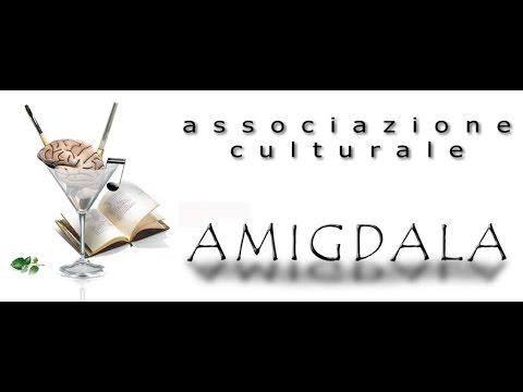 VII Amigdala International Music Competition memoria