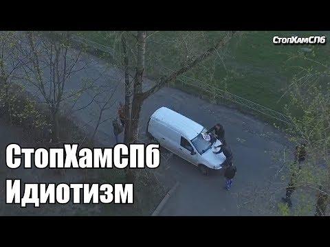 СтопХамСПб - Идиотизм 2017 год.