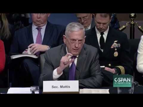 Mattis on Russian Mercenaries in Syria: I Ordered Their Annihilation