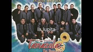 banda tamazulas de guasave el huizache (álbum completo)