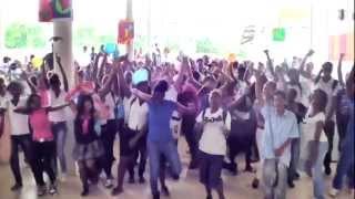 LIPDUB 2013 en danse du Lycée MELKIOR-GARRE à Cayenne, Guyane.  Final en FlashMob