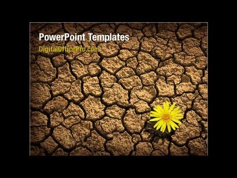 Desert flower powerpoint template backgrounds digitalofficepro desert flower powerpoint template backgrounds digitalofficepro 04901 toneelgroepblik Image collections