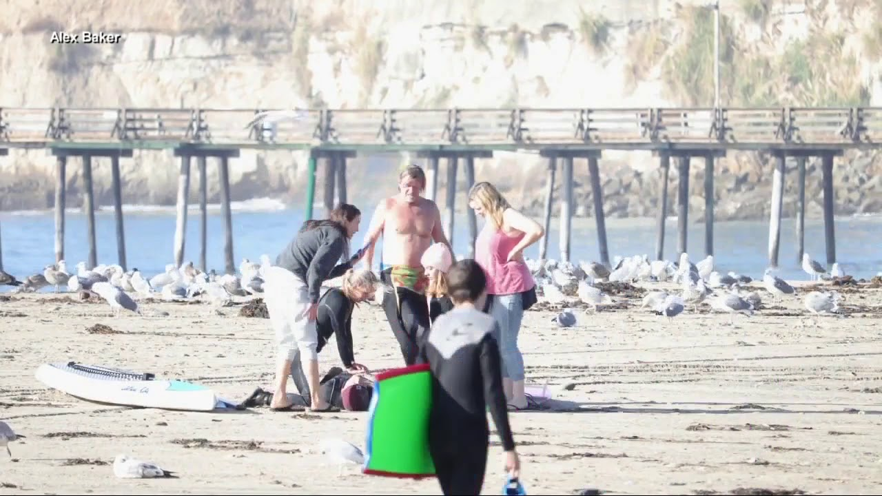 dating a surfer girl watify matchmaking event on internet of things