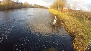 Salmon Fishing on the River Tyne at Bywell.