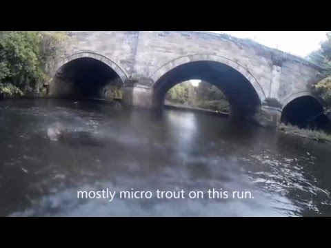 Fishing the River kelvin for trout.