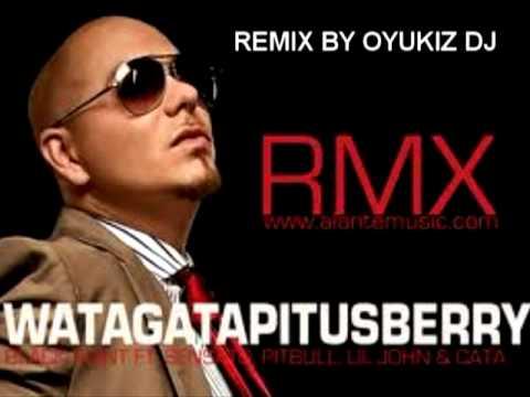 Pitbull   Watagatapitusberry Remix by OyukiZ DJ