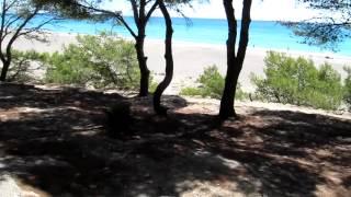 Visita a la playa del Torn