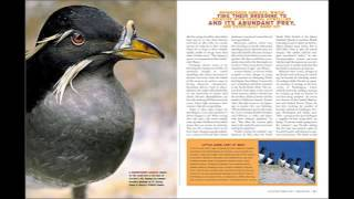 page layout magazine specific