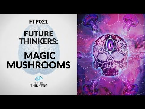 Magic Mushrooms Changed My Life - Trip Report (Excerpt from FTP021)