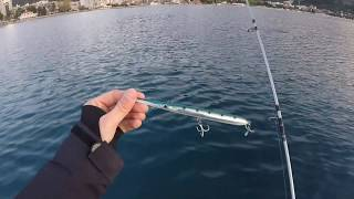 Montenegro Spinning - Jack Fin Stylo 210 - Bluefish attack