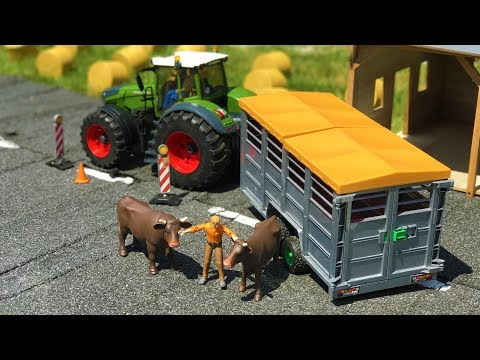 BRUDER TOYS farm animals cows TRANSPORT! | Learn animals | Kids videos