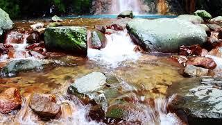 Pesona Keindahan Alam Curug Taman Nasional Gunung Halimun Salak