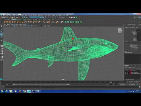 Rigging Class - Rigging a Shark Part 1