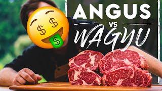 ANGUS v/s WAGYU
