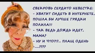 Юмор Теща и Свекровь одна Прекрасные Дамы Анекдоты Приколы
