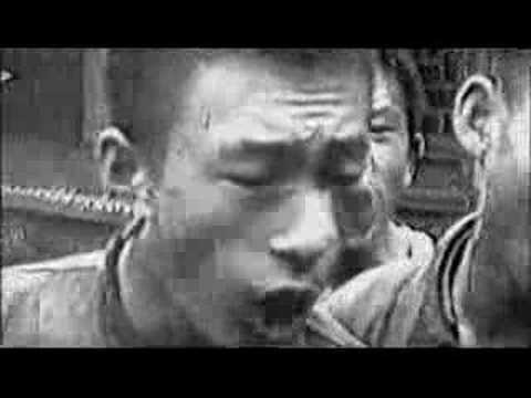 文化大革命(瘋狂記實)