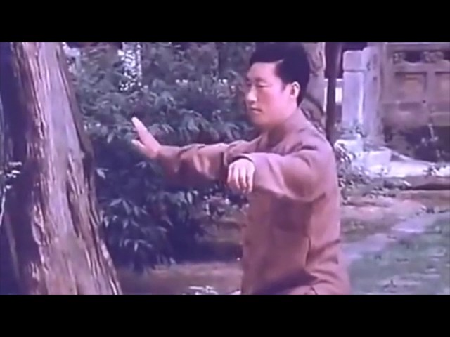 Chen Xiao Wang - Tai Chi style Chen (Xinjia Erlu - Chenjiagou 1981)