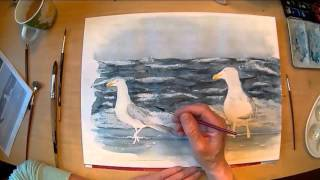Möwen am Strand Aquarell Speed  Painting seagulls at the beach watercolor