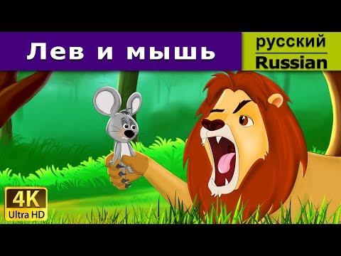 Лев и мышь - детские рассказы - 4K HD - Сказочная мультфильмы для детей - русские народные сказки