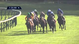 Vidéo de la course PMU QATAR PRIX DOLLAR