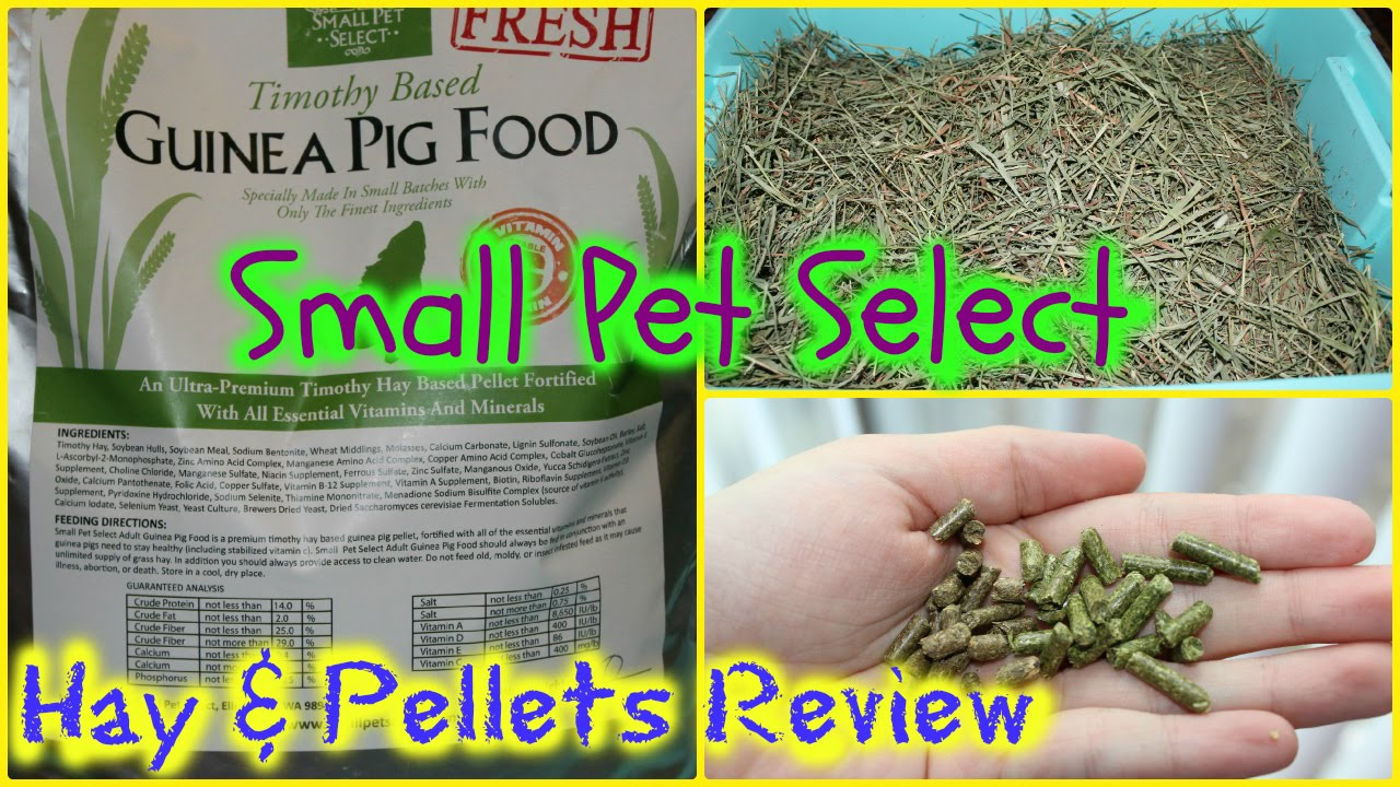 Small Pet Select Hay and Pellets REVIEW - YouTube