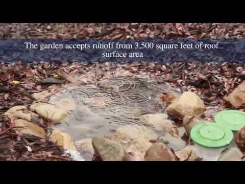 Watershed Friendly Garden - Meiners Oaks Elementary School