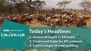 Новий тиждень - новий урок англійської із заголовків Lingohack