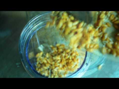 recette-du-pain-vapeur-inspiré-du-pain-essène-par-vegga-bio