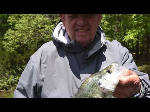 Crappie Fishing On Beaver Lake