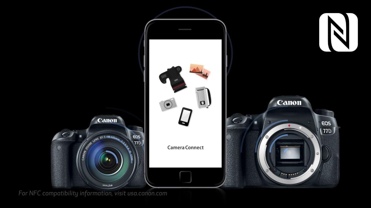 Michael Daniel Ho - The Wildlife Ho-tographer: Canon EOS-77D APS-C