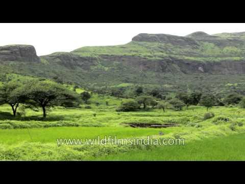 Deccan Traps of Central India