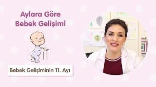 Bebek Gelişiminin 11. Ayı - Dr. Aylin Şimşek