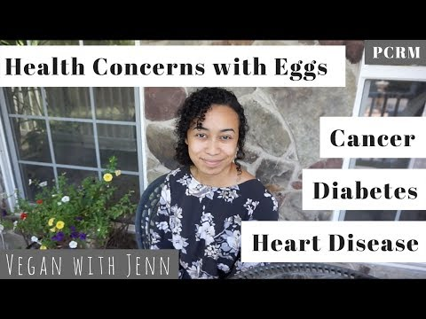 Health Concerns with Eggs PCRM fact sheet   VEGAN WITH JENN