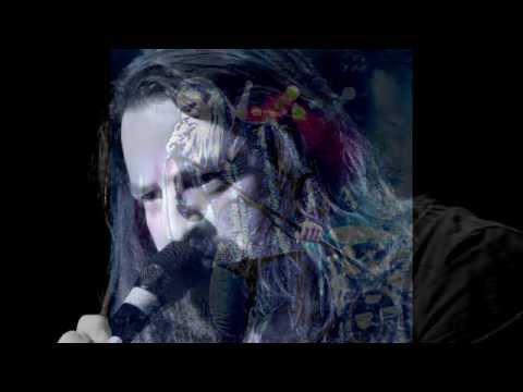 Allen lande - The Artist (Instrumental by Vitaliy Antonuk)