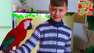 ВЛОГ Игорь и Арина идут в Контактный ЗООПАРК для детей - Кормим, гладим, играем с животными