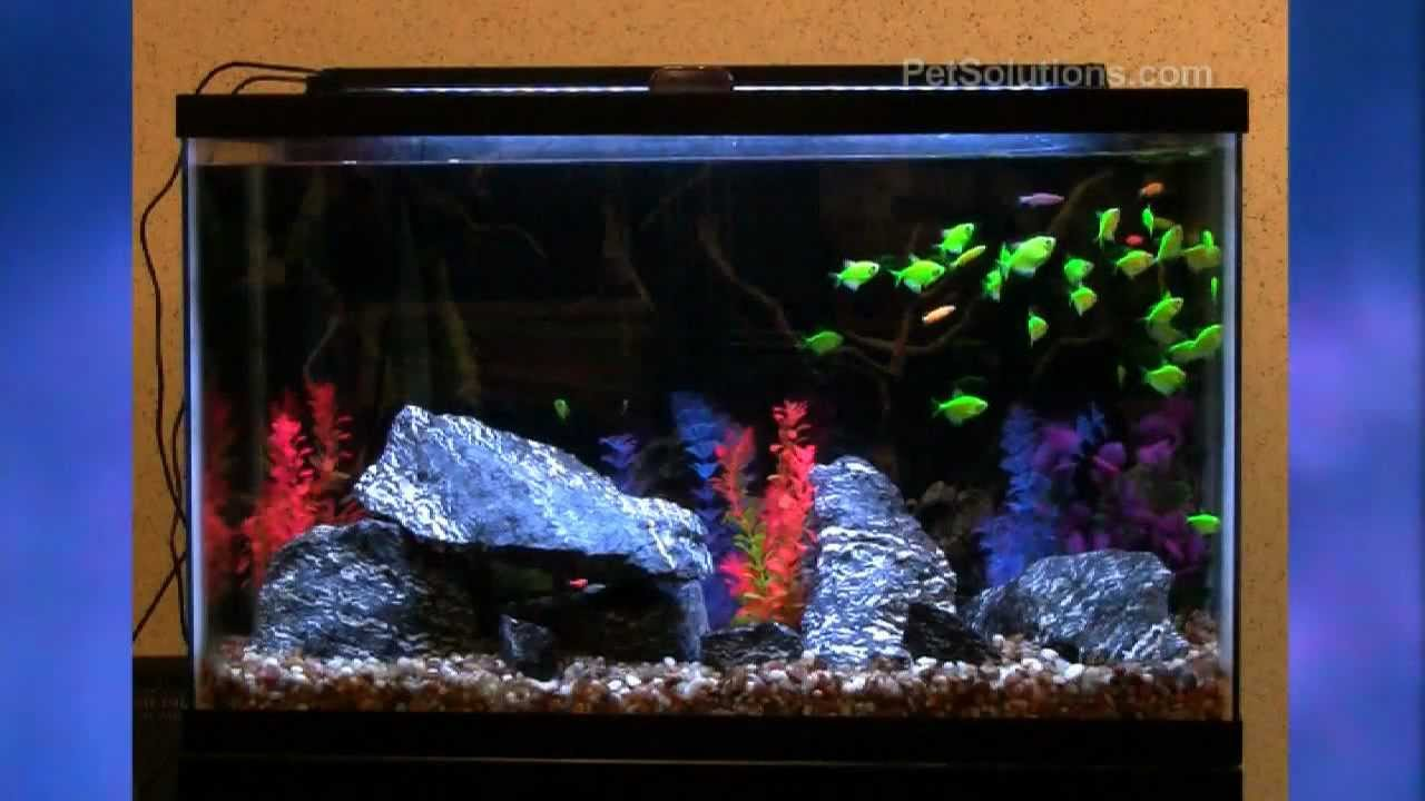 Petsolutions Aquatic Life Expandable Led Aquarium Lighting Fixtures