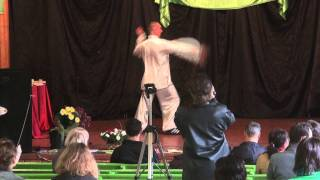 Галица. Китайское искусство и боевые практики (фрагм)