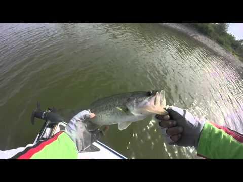 Pescando con Crankbait presa los Mimbres