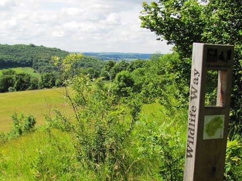 Cotswolds Country Walk   Slad Valley   Elves on the Laurie Lee Wildlife Way round