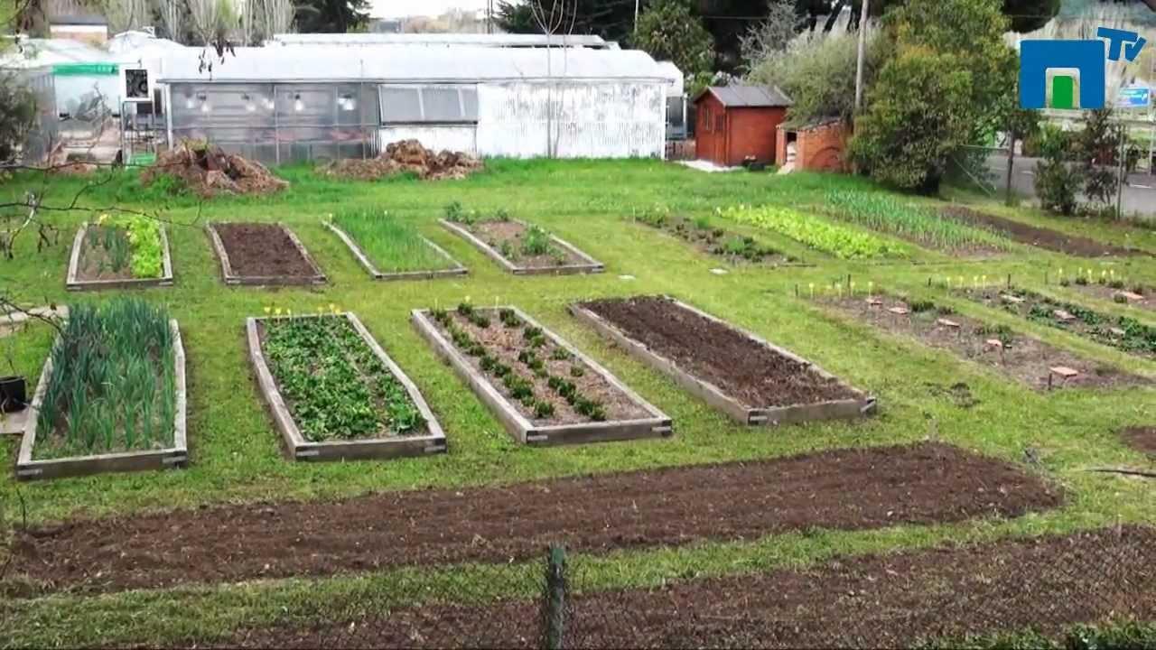 Huerto ecol gico de la e t superior de ingenieros for Cercados jardin