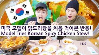 미국 모델이 닭도리탕을 처음 먹어본 반응! (332/365) Model Tries Korean Spicy Chicken Stew!