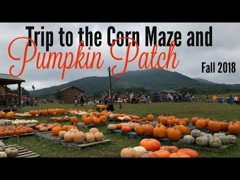 CORN MAZE / PUMPKIN PATCH / FALL 2018 / VLOG