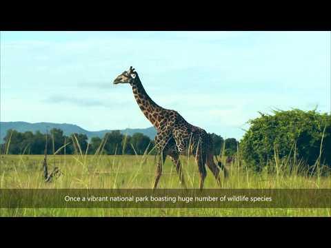 Wildlife Translocation - Sioma Ngwezi National Park