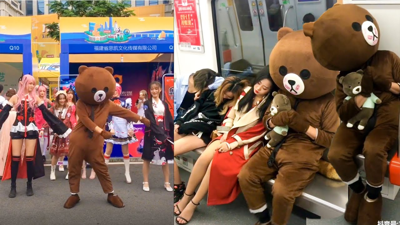 Funny Video in Tik Tok China/Funny chinese Brown Tiddy Bear/ Gấu TROLL cực lầy