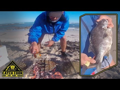 Galjoen / Black Bream BBQ On The Beach In The Overstrand [CATCH CLEAN COOK] Bettys Bay, South Africa