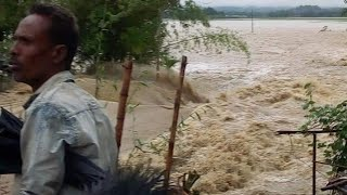 Flood at Patharkandi Karimganj | Assam