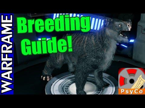 Warframe Kubrow Breeding Guide! [1080HD]